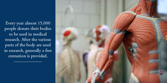 Every year almost 15,000 people donate their bodies to be used in medical research. After the various parts of the body are used in research, generally a free cremation is provided.